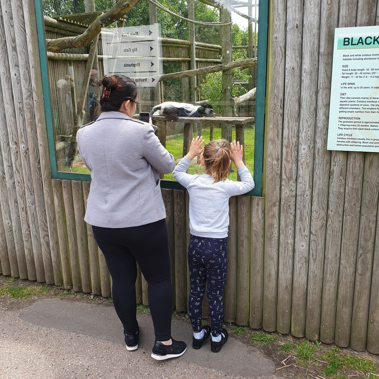 Martha and Hannah at the zoo